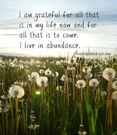 I live in abundance and I am grateful. Visit us at: www.GratitudeHabitat.com #gratitude #abundance #grateful-for-all