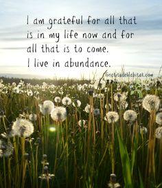 I live in abundance and I am grateful. Visit us at: www.GratitudeHabitat.com #gratitude #abundance #grateful-for-all