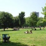 Green Park in Summer Time