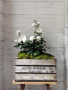 Wooden crates as planters. Love Flowers, White Flowers, Beautiful Flowers, Wedding Flowers, White Roses, Deco Floral, Arte Floral, Cabbage Roses, Garden Inspiration