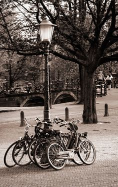 Brad Mitchell: Bycicles Chained to Light Post in Amsterdam    Available with acrylic finish in sizes up to 37 x 58 inches.    Bicycles chained to light post, Amsterdam. By Brad Mitchell Photography.