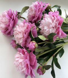 Peonies Bouquet, Beautiful Flowers, Floral Wreath, Wreaths, Home Decor, Floral Crown, Decoration Home, Door Wreaths, Room Decor