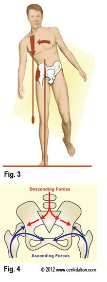 Sacroiliac Joint Syndrome - Erik Dalton Repinned by SOS Inc. Resources http://pinterest.com/sostherapy.