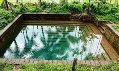 Kulam this is me Kerala Travel, Kerala House Design, Natural Pond, Kerala Houses, Amazing India, Lawn And Landscape, Indian Homes, Garden Pool, Traditional House