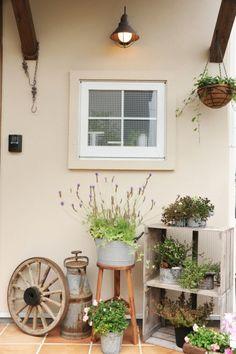 『かわいい家photo』では、かわいい家づくりの参考になる☆ナチュラル、フレンチ、カフェ風なおうちの実例写真を紹介しています。 Little Gardens, Cottage Kitchens, Green Flowers, Garden Styles, Succulents Garden, Store Fronts, Potted Plants, Patios, Garden Design