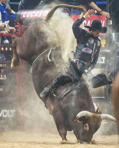 First time I've seen the bull eat dirt before the cowboy.