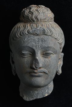 Gandharan Sculpture Fragments: Head of Buddha    EU1333 (Fine Art accession no)