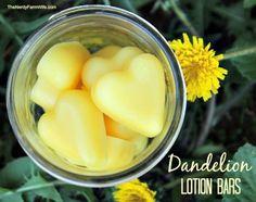 Homemade Dandelion Lotion Bar Recipe