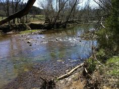 Historic Drowning Creek runs through my property. The water is low in photo. Daniel Boone had a camp on the creek.
