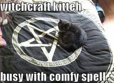 witchcraft kitteh