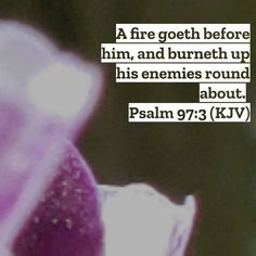 Psalm 97, Holy Spirit, Bible Verses, Christian, God, Holy Ghost, Dios, Allah, Scripture Verses