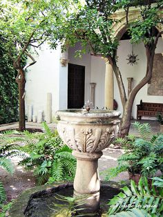 The beauty of the Andalusian patio