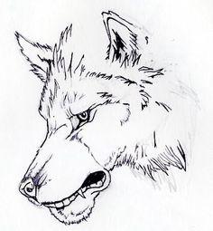 wolf sketch lines - Αναζήτηση Google