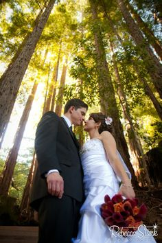 newlyweds in the redwoods