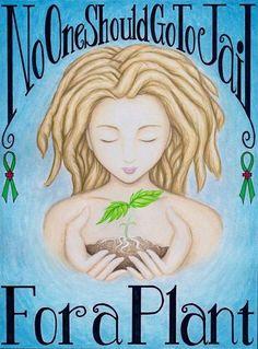 ☮ American Hippie Weed Quotes ~ Art .. Cannibas Marijuana