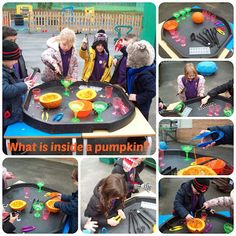 """Investigating the inside of a pumpkin"" Tuff Spot tray perfect for early years. Eyfs Activities, Nursery Activities, Autumn Activities, Learning Activities, Tuff Spot, Eyfs Classroom, Outdoor Classroom, Outdoor School, Classroom Ideas"