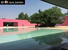Consulta esta foto de Instagram de @lasarboledas • 9 Me gusta