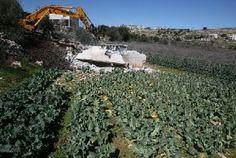 تقرير: 103 اعتداءات إسرائيلية خلال الشهر الماضي - الاتحاد العام لنقابات عمال فلسطين قطاع غزة PGFTU