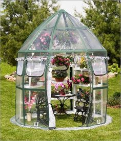 Pop-up greenhouse! How nifty if you have a small yard!