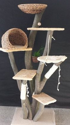 15 Things To Avoid In Building A Custom Cat Tree - meowlogy Diy Cat Tree, Best Cat Tree, Cat Hacks, Cat Towers, Cat Shelves, Cat Playground, Cat Enclosure, Cat Room, Cat Condo