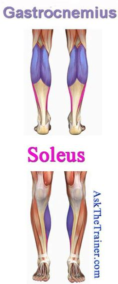 Strengthen feet and ankles helping the calves - 30 second toe walk, 30 second heel walk, picking up marbles with toes, heel raises with only toes resting on elevated surface, and moving toes toward heel to strengthen arch