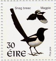 magpie stamp