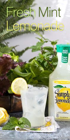 Adding a sprig of mint from the garden adds to the real, honest ingredients used to make Simply Lemonade. Refreshing Drinks, Summer Drinks, Fun Drinks, Healthy Drinks, Beverages, Smoothies, Smoothie Drinks, Non Alcoholic Drinks, Cocktail Drinks