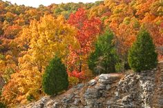 View over the Ozark Mountains in fall.