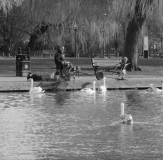 Stratford upon avon taken by ginge on the 13 /3/17 I've changed the photo to black and white