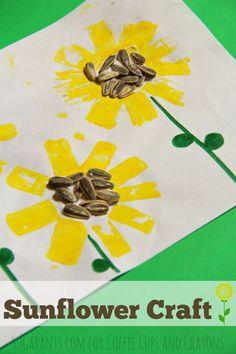 Sunflower Craft Summer Crafts, Fall Crafts, Sun Crafts, Spring Activities, Activities For Kids, Projects For Kids, Crafts For Kids, Sunflower Crafts, Sunflower Seeds
