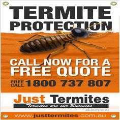 Just Termites for inspections and treatments in Melbourne, Victoria