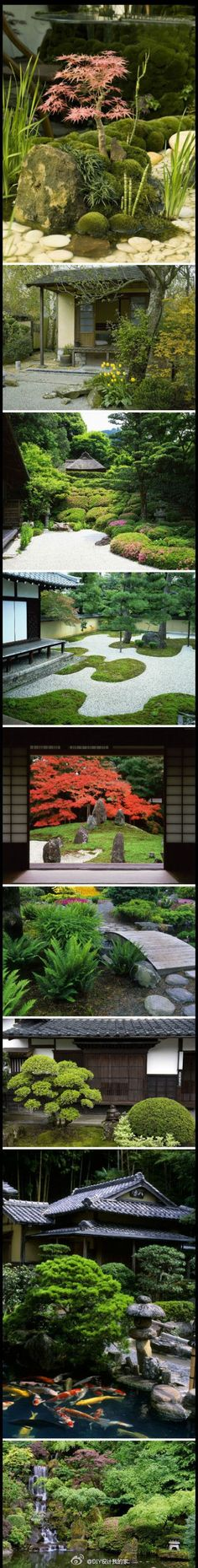 The japanese garden. complexity & simplicity at the same time Garden Garden backyard Garden design Garden ideas Garden plants Japanese Garden Style, Japanese Landscape, Chinese Garden, Japanese Architecture, Japanese Gardens, Japanese Plants, Dream Garden, Garden Art, Garden Plants