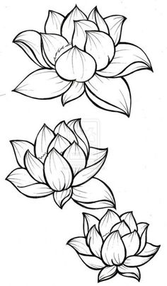 Trendy Flowers Ilustrations Loto - Heike Przyklenk Trendy Flowers Ilustrations Loto - Heike Przyklenk - Graphic sketch of lotuses in ornament on a white background. lotus flower drawings for tattoos Flower Sketches, Drawing Sketches, Art Drawings, Flower Tattoo Designs, Flower Designs, Tattoo Flowers, Lotus Flower Tattoos, Flower Ideas, Lotus Flower Art
