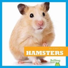 This photo-illustrated book for early readers tells how to take care of a pet hamster--