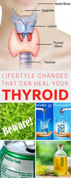 Hypothyroidism Diet - Lifestyle Changes That Can Your Thyrotropin levels and risk of fatal coronary heart disease: the HUNT study. Hypothyroidism Diet Plan, Thyroid Diet, Thyroid Issues, Thyroid Gland, Thyroid Hormone, Thyroid Disease, Thyroid Problems, Thyroid Health, Health Diet