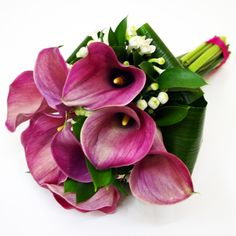 Calla Lilies are my absolute favorite flower, the fact that they are purple makes them that much better. Bride Bouquets, Calla Lily, Wedding Flowers, Wedding Stuff, Succulents, Boutonnieres, Purple, Plants, Lilies
