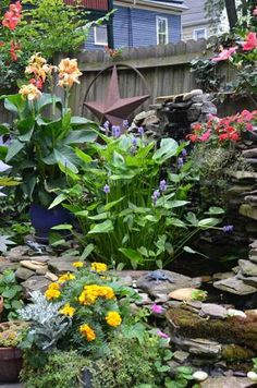 pond garden - Flower Garden Ideas Illinois