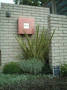 ニューサイラン サントリナ 植栽