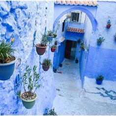 Spent the weekend in this gorgeously blue city. It is by far my favorite place in Morocco by @theartofwanderlusting #morocco #maroc http://ift.tt/2aN0580