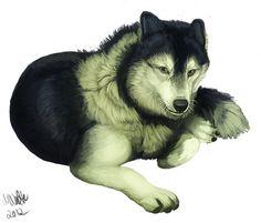 "Ein ""Malamute-Husky-Wolf-Mix"" #Fanart des Tages"