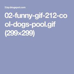 02-funny-gif-212-cool-dogs-pool.gif (299×299)