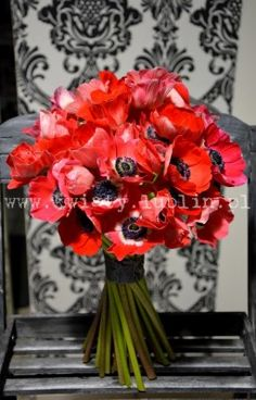 Bukiet ślubny z czerwonych anemonów Flora, Burgundy, Anemones, Bouquets, Plants, Red, Bouquet, Bunch Of Flowers, Plant
