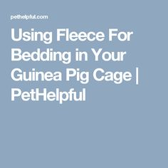 Using Fleece For Bedding in Your Guinea Pig Cage | PetHelpful