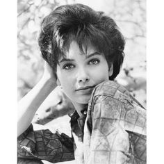 My 50 Babe's Of The Suzanne Pleshette. Suzanne Pleshette, As Roma, Vintage Hollywood, Classic Hollywood, Beautiful Celebrities, Beautiful Actresses, Beautiful Women, Rome Adventure, Divas