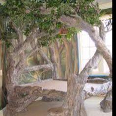 Favorite tree bed!!