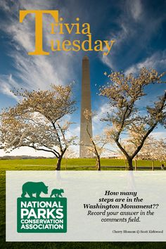 How many steps are in the Washington Monument? Record your answer in the comments field.