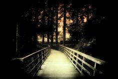 Bridge to by Martin Jansen on 500px
