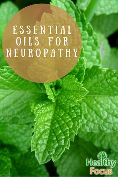 Neuropathy is a painful condition that occurs when there is damage to the peripheral nervous system. Despite the grim nature of this disorder, there are many treatments, such as the use of essential oils, which can alleviate these painful symptoms and make living with neuropathy more manageable.