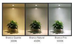 Resultado de imagem para cor da luz na fotografia