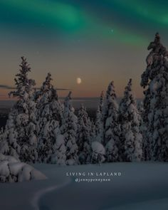 Back in Lapland 🤗💚❄️✨ My home city got some new snow 😅👌❄️❄️❄️❄️❄️❄️❄️❄️❄️ Happy saturday 😘 . . . . #thebestoffinland #visitingfinland… Lapland Finland, Happy Saturday, Instagram, Art, Art Background, Kunst, Performing Arts, Art Education Resources, Artworks